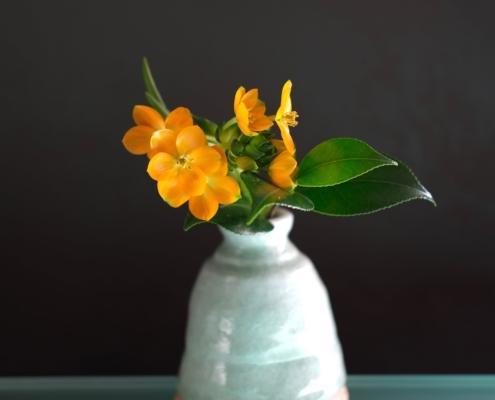 Anteprima corso online ikebana