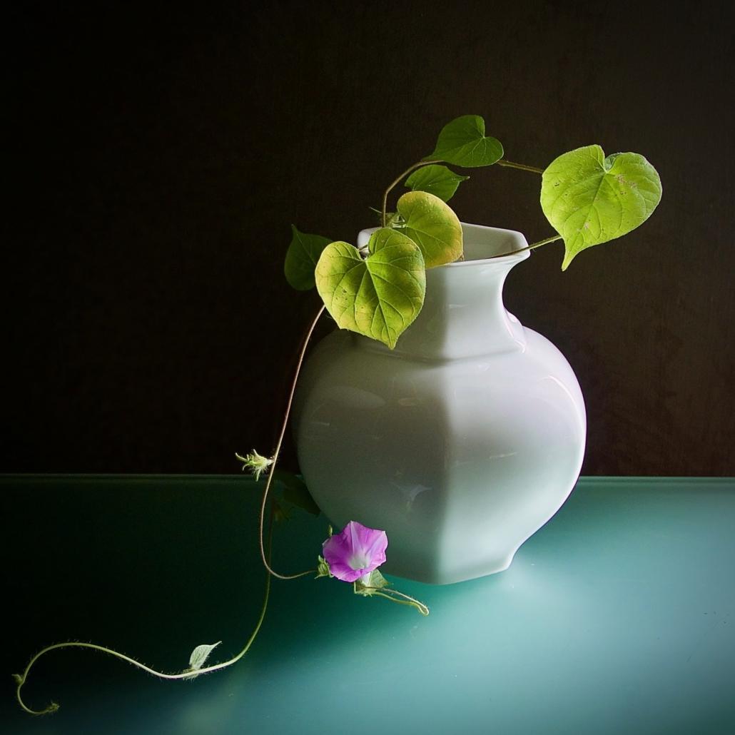 Ikebana, storia e filosofia