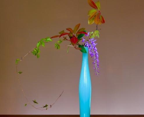 Ikebana con glicine. Corsi di ikebana