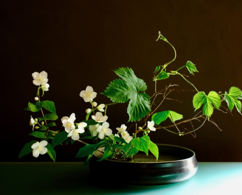 Ikebana di primavera
