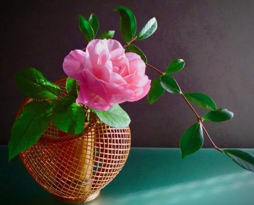Cestino. Ikeban con una rosa